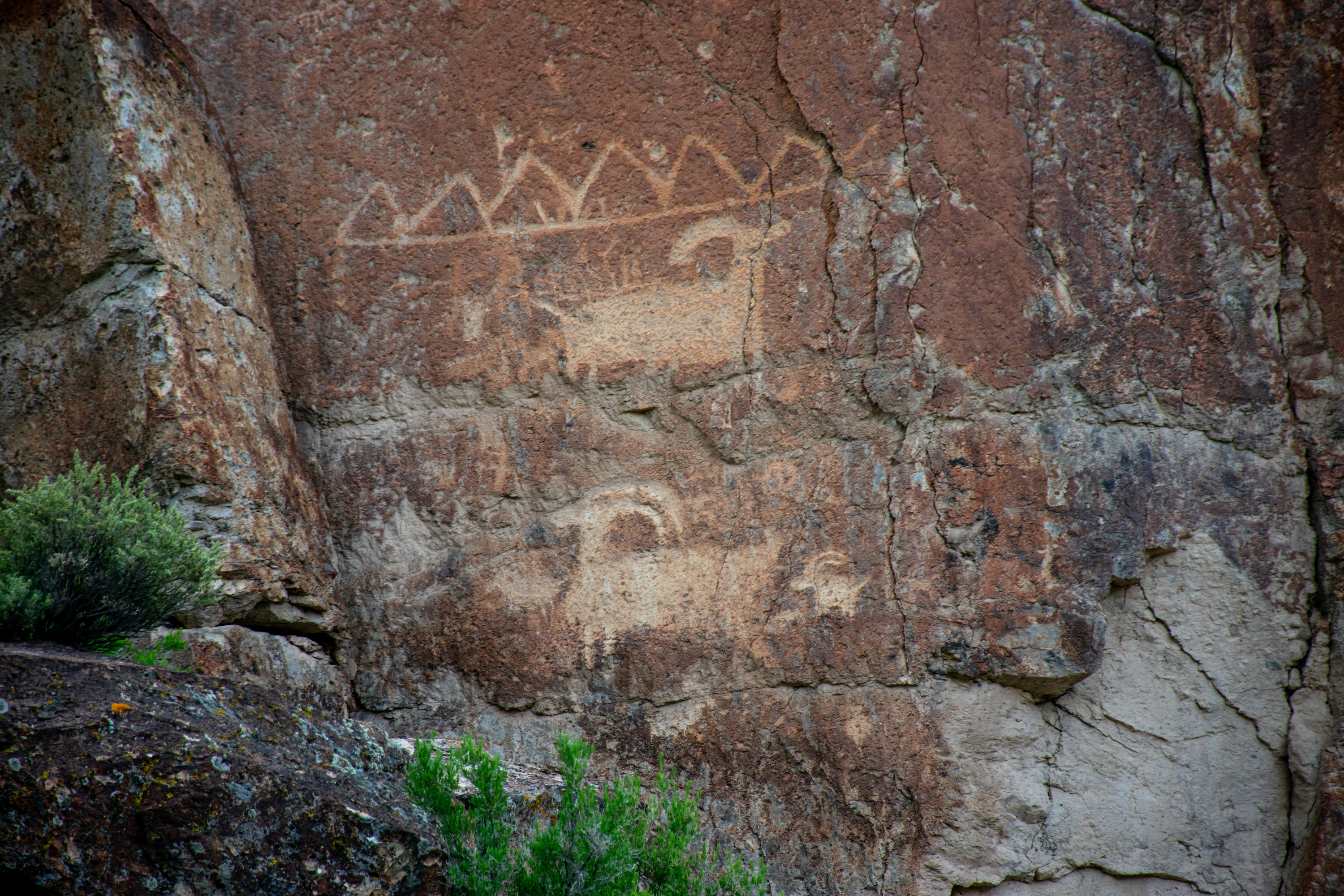 Two antelope drawings on a rock wall