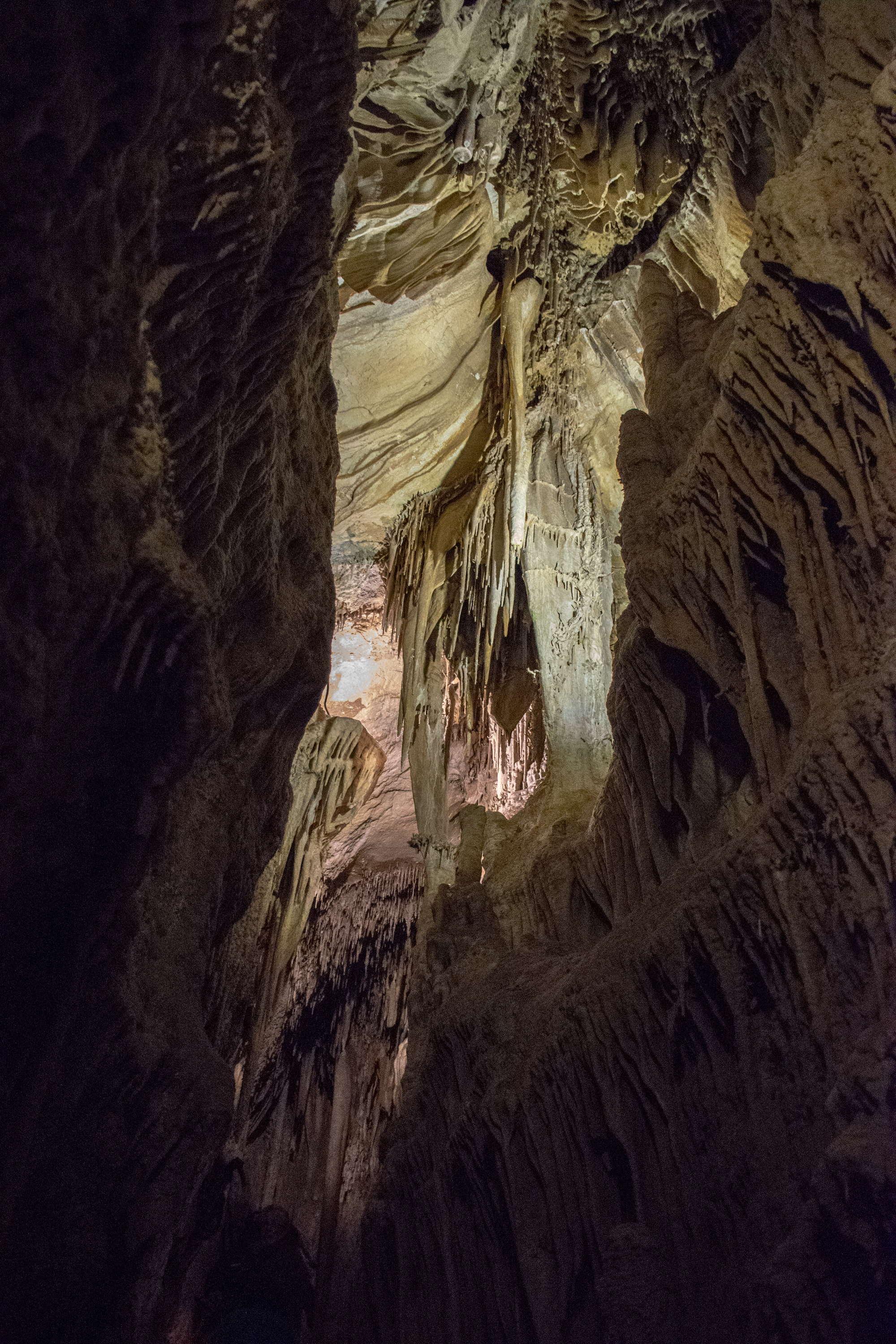 Stalactites in Lehman Caves