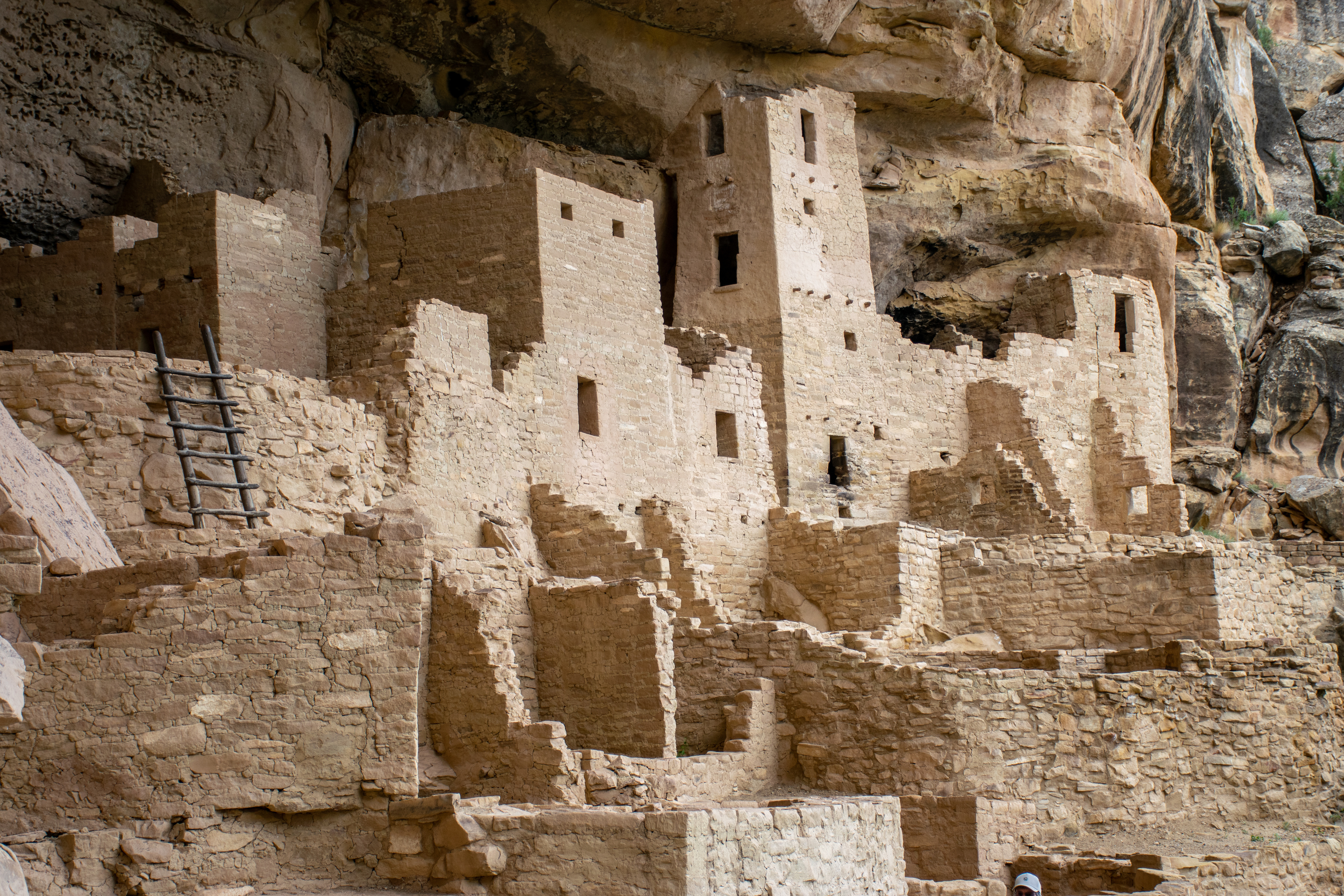 View of the right hand side of Cliff Palace with buildings and ladder in view